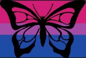 bibutterfly